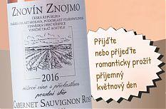 Ochutnávka růžových vín